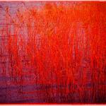 赤色加工した水草