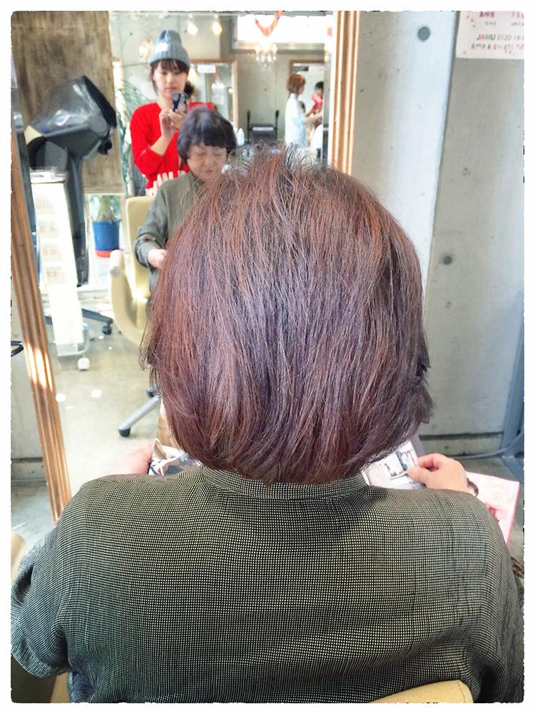 10月28日記事(マッシュボブ)の画像3