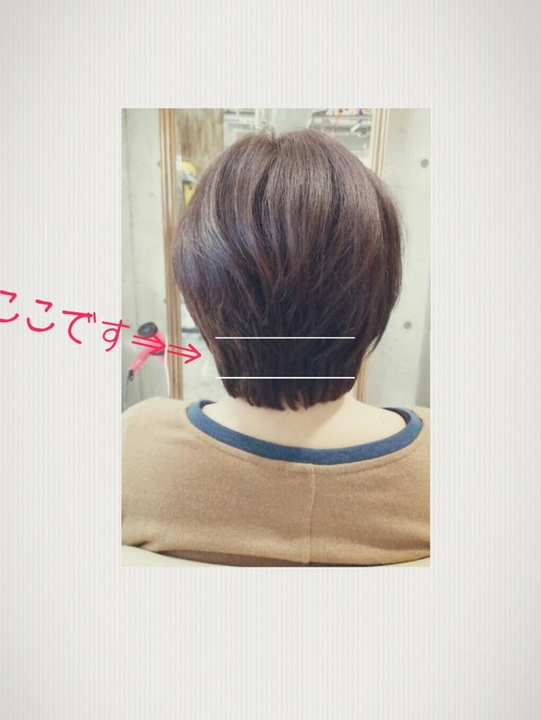 10月26日の季節感のあるショートヘア記事画像2