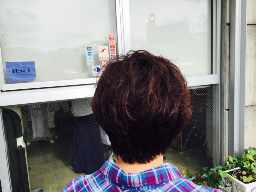 12月3日の記事「忙しい暮れ〜」挿入、後頭の画像