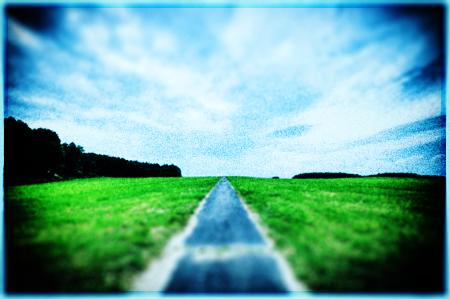 空と草原の写真